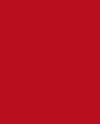sceneaccess logo
