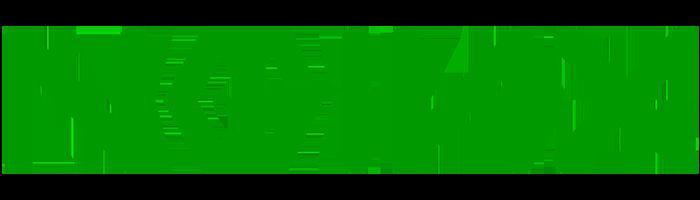 nginx logo servidor web